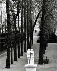 img_Parc-de-Saint-Cloud--1981_Edouard-BOUBAT_ref~PL179_mode~zoom.jpg